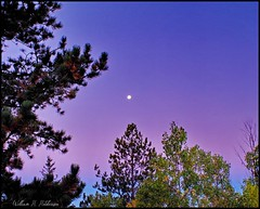 September 22, 2021 - Moon in the purple sky at sunrise. (Bill Hutchinson)