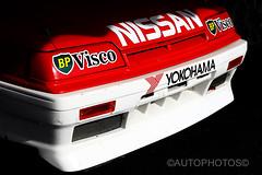 Looking for the light - Nissan Skyline HR31 GTS-R - Historic Sandown 2014 -                                 7D2_2907