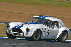 Ernie Nagamatsu - Shelby Cobra - Phillip Island Classic 2014 -                                                                             ID2_0560A