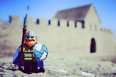 Viking outside the fortress.