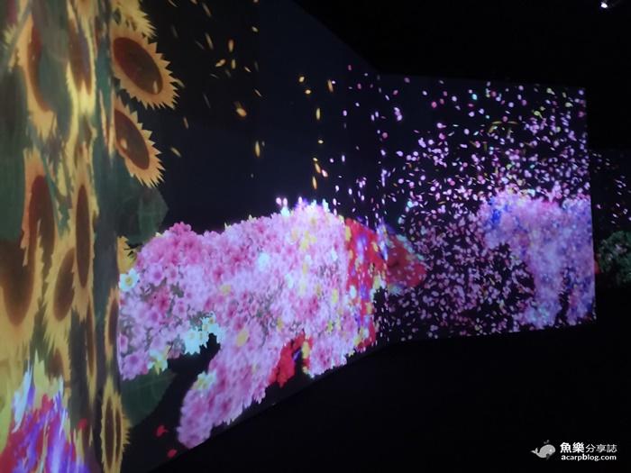 【台北士林】teamLab 未來遊樂園&與花共生的動物們 @魚樂分享誌