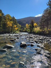 October 11, 2021 - High country stream and fall foliage. (Ashlea Beers)