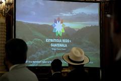 20211012 AI PRESIDENTE - REDD+ ( envio ) 0003 by Gobierno de Guatemala