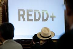 20211012 AI PRESIDENTE - REDD+ ( envio ) 0005 by Gobierno de Guatemala
