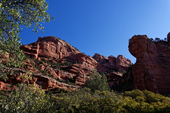 Tales and Adventures of Exploring Coconino National Forest