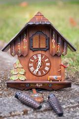 269/365 the castoff cuckoo clock