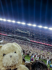 Those damn Aggies stole my Panda and Bear and took him to an Aggie Football game