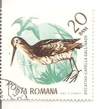 Stamps from Posta Romana