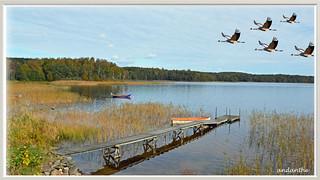 Around the lake Stensjn (4)