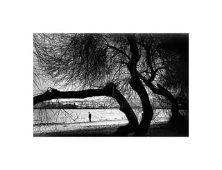 Photograph_