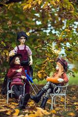 Autumn garden 2021 - burgundy