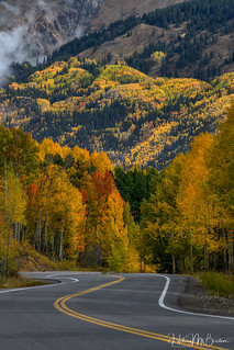The road to never ending beauty..