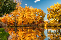 October 24, 2021 - Gorgeous fall colors. (Tony's Takes)