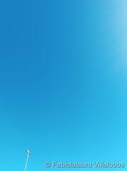 October 24, 2021 - Beautiful blue skies. (Fabiolalaura Villalobos)
