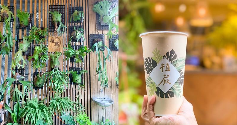 【台南美食】植蕨 茶飲專賣店 鹿角蕨空