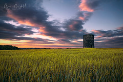 The Old Windmill (gcfotographos) Tags: uk trees sunset summer england sky windmill field clouds landscape nikon britain dusk farm ngc sigma northumberland campbell sigma2470mm d700 scenicsnotjustlandscapes greatbritishlandscape landscapeseascapes graemecampbell