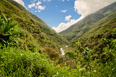 Green everywhere (The Nature Guy) Tags: jungle green peru forest andes landscape nikon d7000 sigma18200