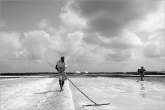fate forever, dharasana (nevil zaveri (thank you for 20+M views:)) Tags: zaveri salt pans reflection people crystals bulsar seasalt woman women work worker labour monochrome blackandwhite india peopleatwork documentary story photography photographer images photos blog stockimages saltpans dry stick photograph photographs portraits gujrat agariya landscape sky man skyscape clouds gujarat bw nevil tools nevilzaveri stock photo dharasna valsaddistrict valsad dharasana rural myfav