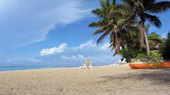 Palm Grove's Beach, Vaimaaga, Rarotonga (482118)