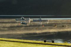 Petit matin sur le Loch Lomond